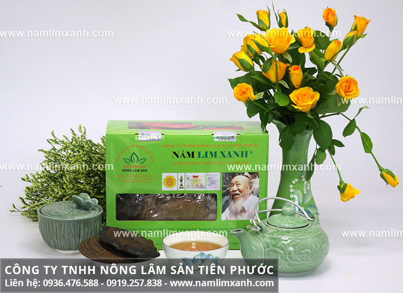 Mua nấm lim xanh ở đâu tốt nhất và mua nấm lim xanh tại Đà Nẵng ở đâu?