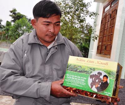 Nấm lim xanh Nguyễn Đình Hoa có thực sự tốt? – Báo Pháp luật Việt Nam