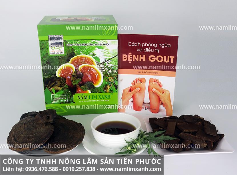 Nấm lim xanh tác dụng với nấm gỗ lim xanh có công dụng chữa bệnh gout