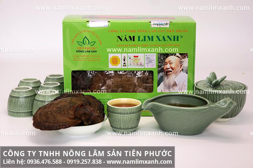Tác dụng của nấm lim xanh Quảng Nam chữa tai biến mạch máu não