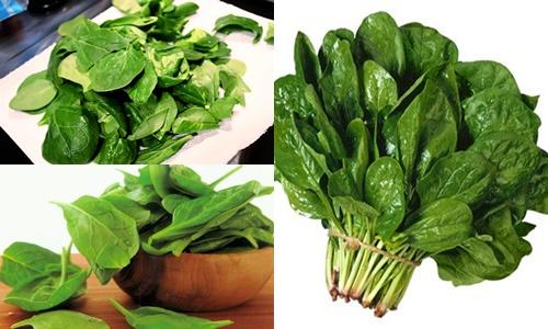 Rau bina là thực phẩm chống rụng tóc hiệu quả bởi nguồn chất sắt rồi dào