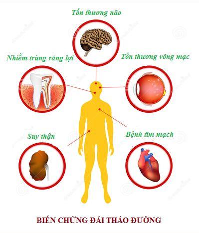 Thực hư nấm lim xanh chữa bệnh tiểu đường hiệu quả?