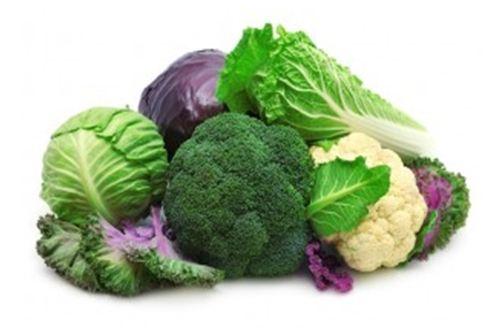 người mắc ung thư đại tràng nên ăn gì nấm lim xanh