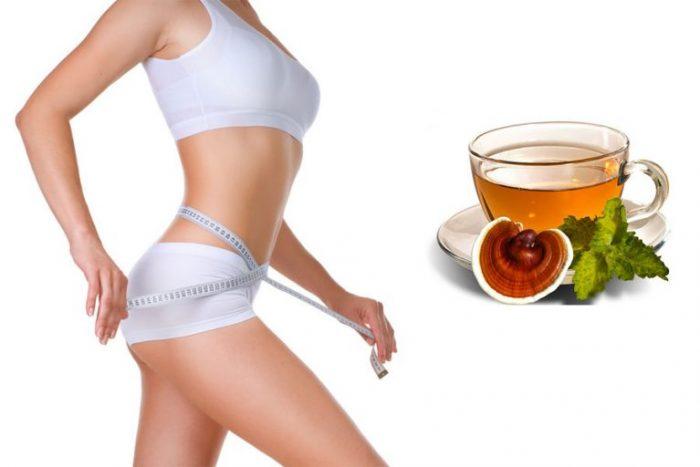 Uống nấm lim xanh giảm cân, giảm mỡ bụng là phương pháp an toàn, hiệu quả.