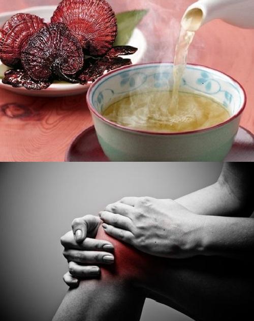 Bài thuốc dân gian chữa đau khớp hiệu quả bằng nấm lim xanh