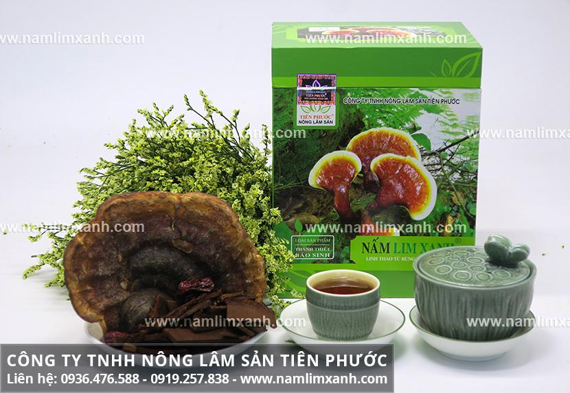 Bán nấm lim xanh tại Hà Nội với địa chỉ bán nấm lim rừng chất lượng