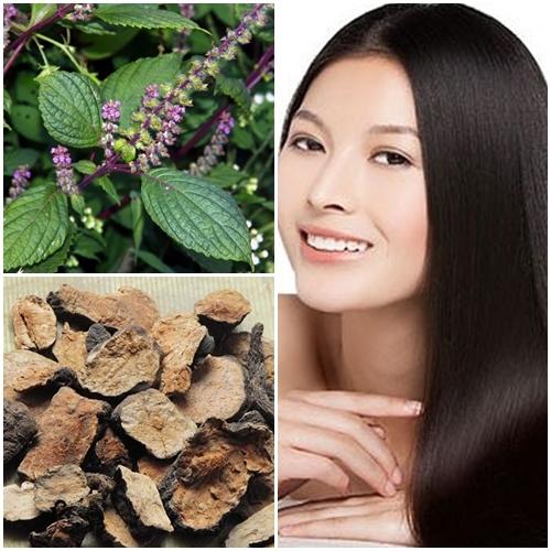 Sử dụng hương nhu, hà thủ ô... là những cách cách làm mềm mượt tóc dễ thực hiện.