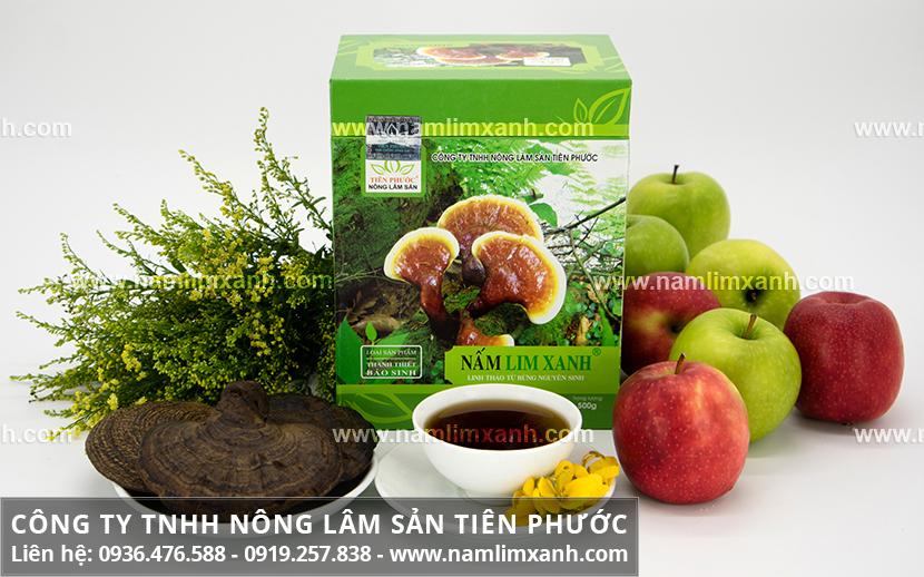 Tác dụng của nấm lim xanh tự nhiên với nấm lim rừng chữa bệnh hiệu quả