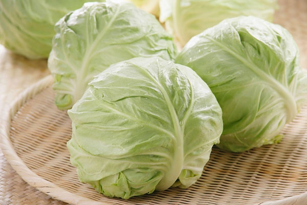 bắp cải nấm lim xanh cây thuốc nam chữa bệnh dạ dày