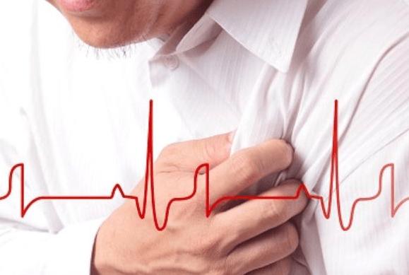 nấm lim xanh phòng ngừa nhồi máu cơ tim