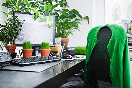 Cuộc sống xanh nơi công sở giúp tăng hiệu suất làm việc