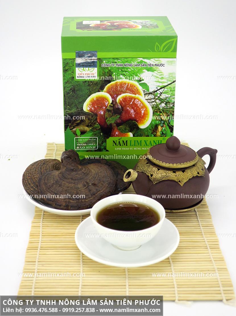Nấm lim xanh rừng Quảng Nam với tìm mua nấm lim xanh rừng ở đâu tốt?