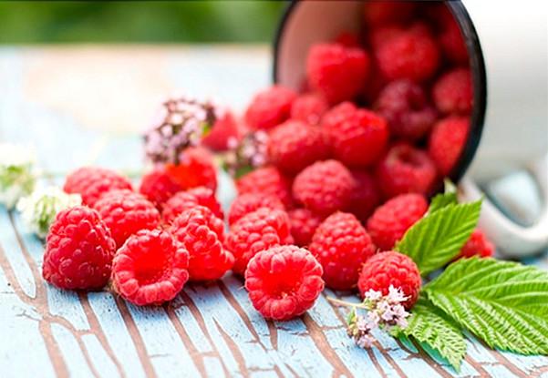 Hoa quả dành cho người tiểu đường