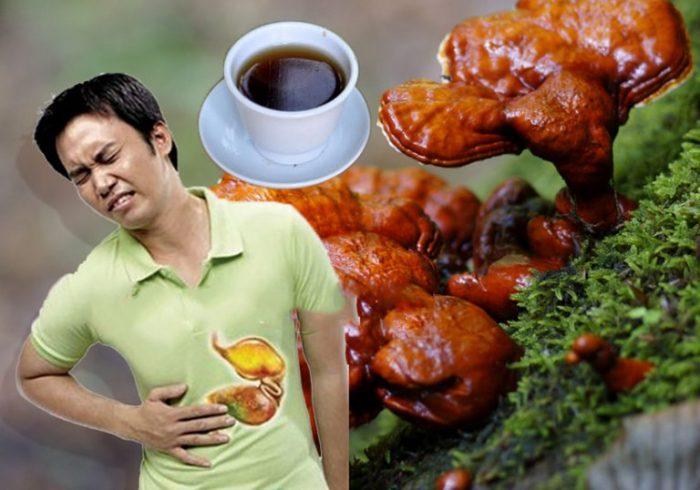 Bài thuốc dân gian trị đau dạ dày với nấm lim xanh