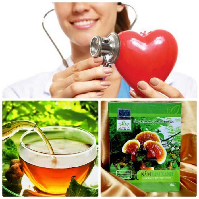 Dược chất trong nấm lim xanh phòng và hỗ trợ bệnh tim mạch hiệu quả