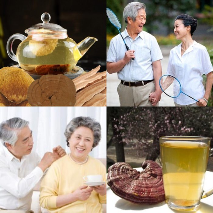 Có nấm lim xanh chống lại biến chứng bệnh gout để vui khỏe sống mỗi ngày