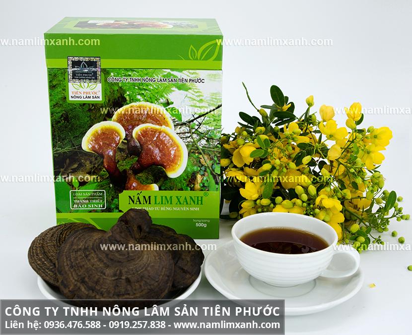 Nấm cây lim xanh Quảng Nam với đặc điểm của nấm lim xanh rừng tự nhiên
