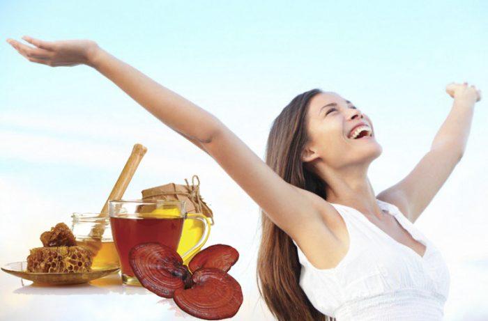 Uống nấm lim xanh để phòng bệnh máu nhiễm mỡ