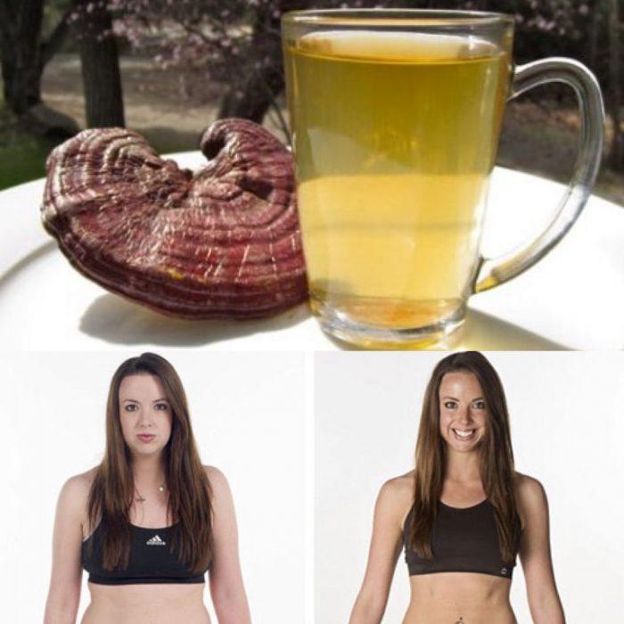 Uống nấm lim xanh mỗi ngày để tiêu hao mỡ thừa và đẹp da