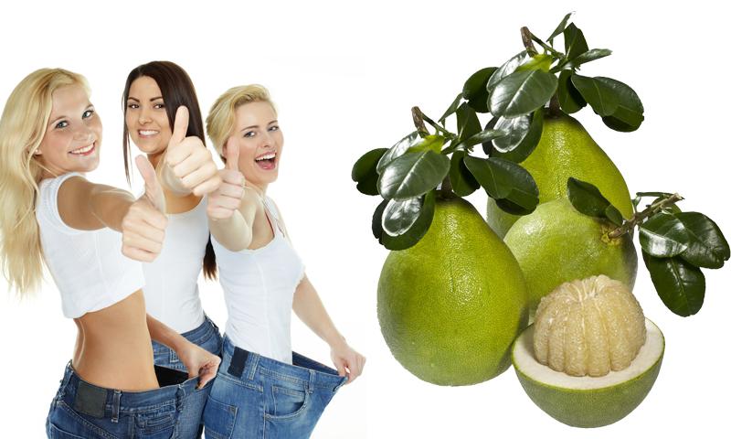 Tác dụng nấm lim xanh trong việc giảm cân