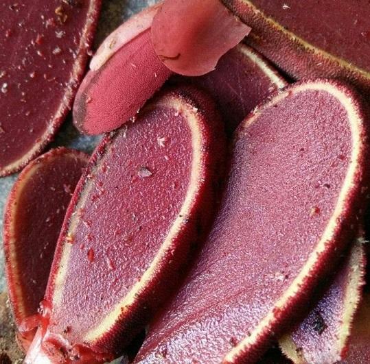 nấm ngọc cẩu - chế biến nấm ngọc cẩu tươi
