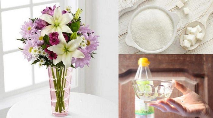 Đường giúp hoa tươi lâu hơn