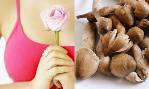 Nấm mối ngăn ngừa và điều trị ung thư, đặc biệt ung thư vú