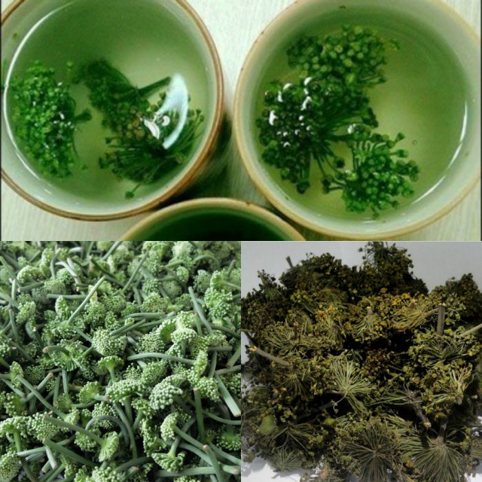 Hoa tam thất có thể sử dụng dưới dạng tươi hoặc dạng khô