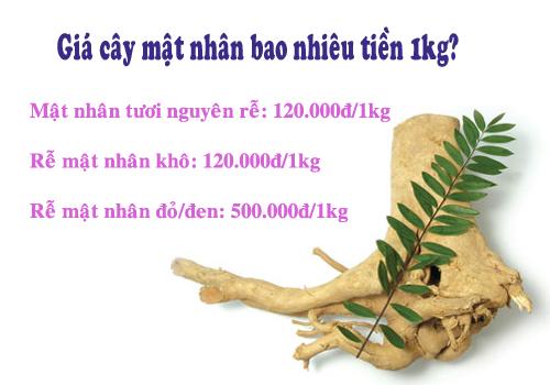 Thông tin giá cây mật nhân bao nhiêu tiền 1kg trên thị trường hiện nay