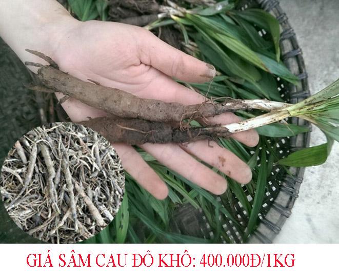 Sâm cau đỏ loại khô có giá 400.000đ/1kg.