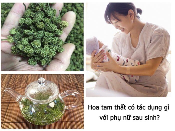 Hoa tam thất có nhiều tác dụng đối với sức khỏe phụ nữ sau sinh.