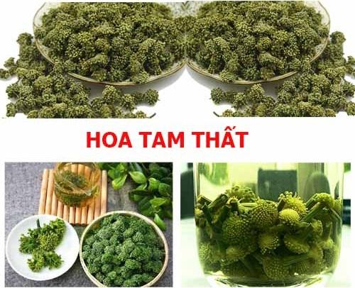 Nước hoa tam thất thật nấu lên sẽ có màu xanh như màu chè Thái Nguyên, vị hơi đắt, mùi thơm đặc trưng rất dễ uống.