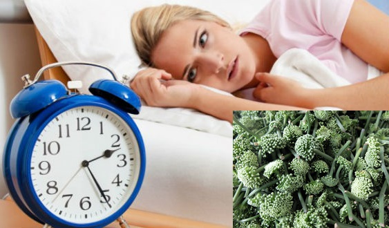 Hình ảnh hoa tam thất: Hoa tam thất chữa mất ngủ hiệu quả