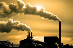 Nguyên nhân dẫn đến ung thư máu do làm việc tại các nhà máy hóa chất