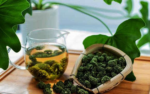 Tác dụng của hoa tam thất sắc nước pha trà có lợi cho sức khỏe.