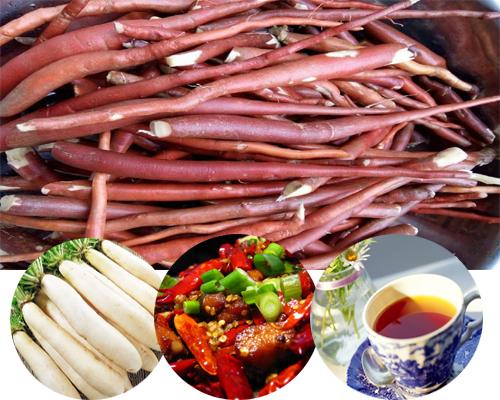 Dùng sâm cau đỏ kiêng uống tà, ăn củ cải, đồ cay nóng