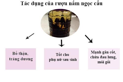 tác dụng rượu nấm ngọc cẩu