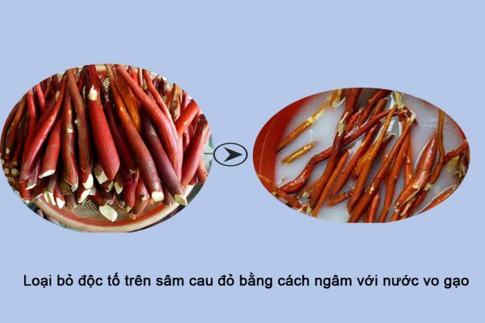 Trước khi sử dụng sâm cau đỏ nên loại bỏ độc tố tự nhiên.