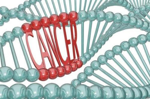 Tế bào ung thư được sinh ra từ chính tế bào của cơ thể người.