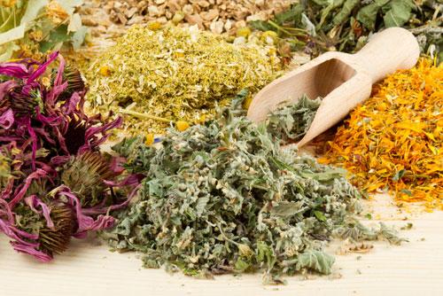 Bài thuốc chữa ung thư bằng các loại thảo dược tự nhiên.