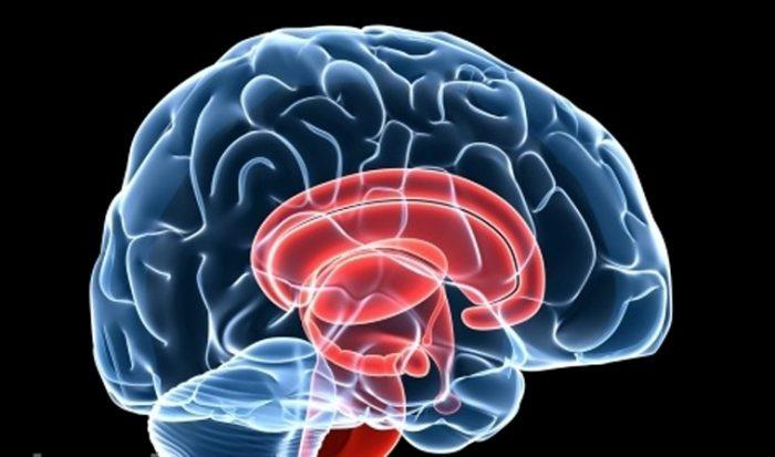 Ung thư não có mấy giai đoạn là vấn đề được nhiều người quan tâm