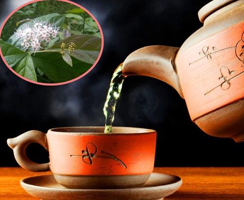 Có 2 cách dùng lá xạ đen tươi: Pha trà và sắc lấy nước.
