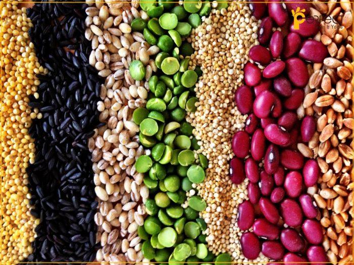 Truyền đạm cho bệnh nhân ung thư bằng các thực phẩm chứa đạm