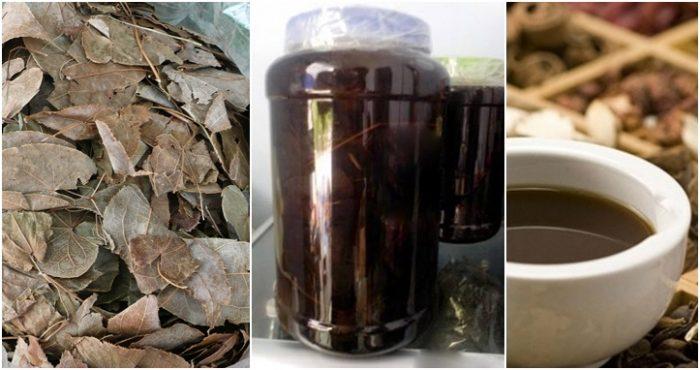 Dâm dương hoắc được phơi khô, dùng bằng cách ngâm rượu hoặc sắc nước.