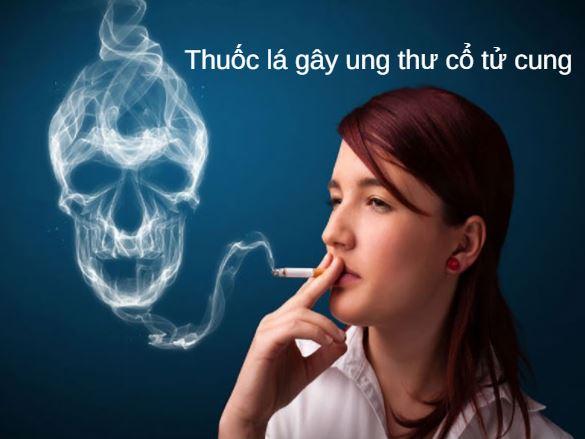 Hút thuốc lá làm tăng khả năng mắc ung thư cổ tử cung