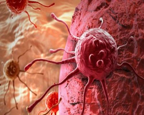Phương pháp thích ứng cho tế bào ung thư sống trong cơ thể