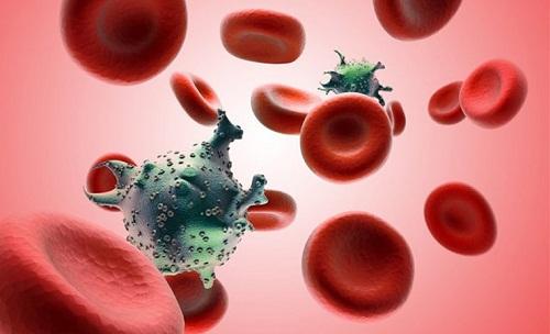 Tế bào ung thư bạch cầu