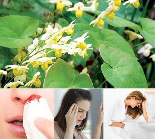 Tác dụng phụ của dâm dương hoắc rất ít, có thể gây ra choáng váng, miệng khô, buồn nôn, chảy máu cam với một số đối tượng.