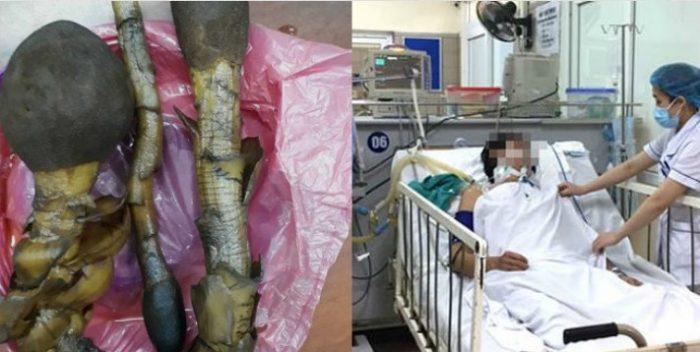 Hình ảnh cây nấm ngọc cẩu ngâm trong bình rượu khiến 2 người ngộ độc
