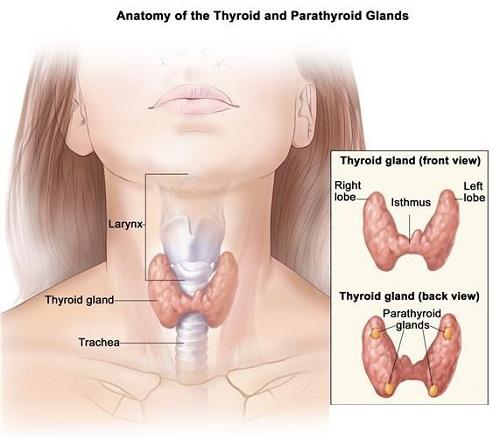 Giải đáp bệnh ung thư vòm họng sống được bao lâu thưa các chuyên gia?